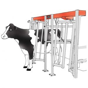 Agromatic Flat Barn Parlor.