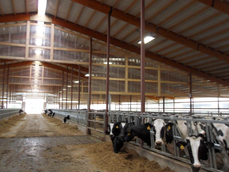modern dairy farm inside in Cleveland, WI.