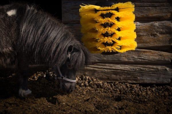 Pony using Agromatic EasySwing Medium Brush
