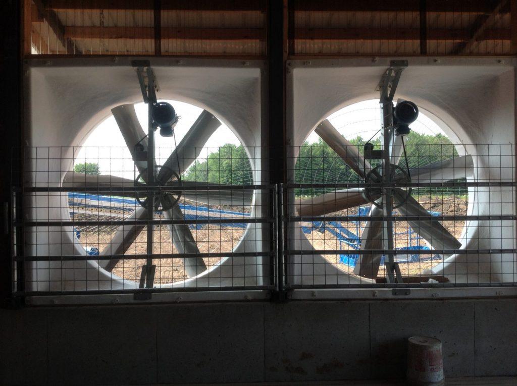 Belt drive exhaust fans inside view in new dairy farm.