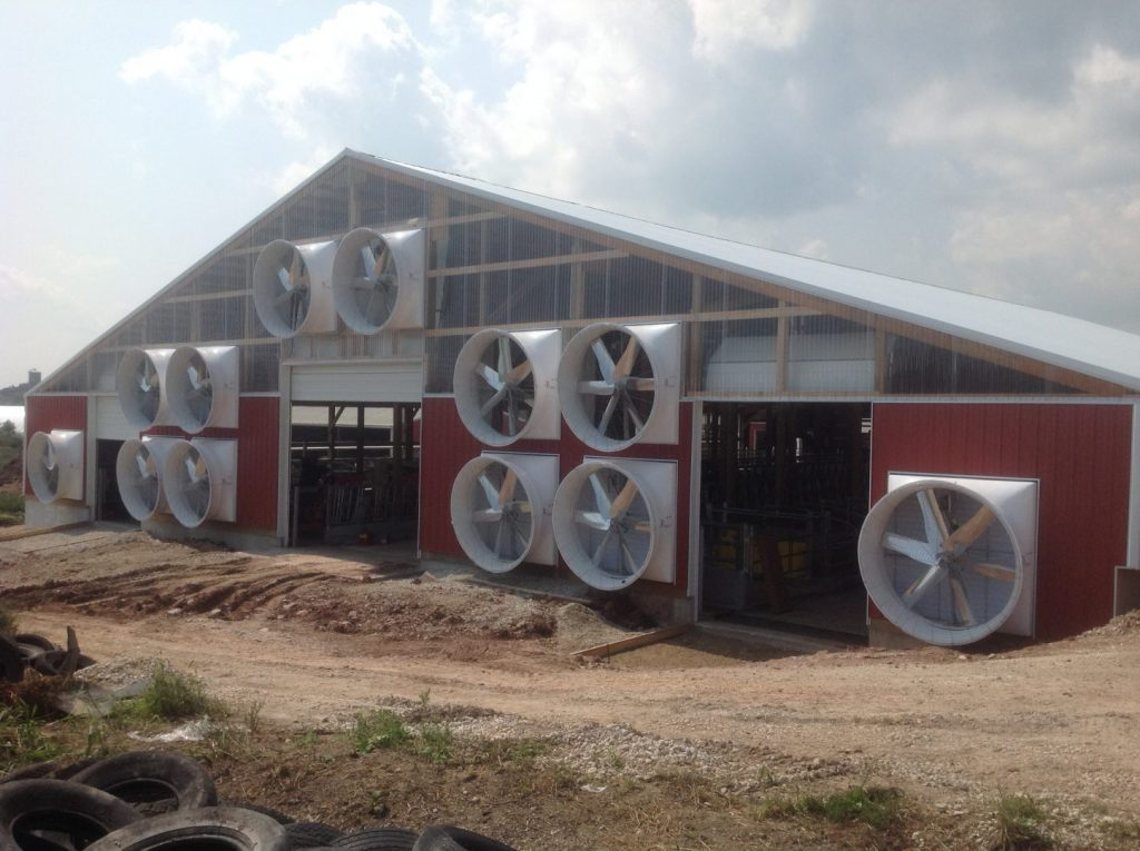 Tunnel ventilation with exhaust fans on a dairy farm with red siding.