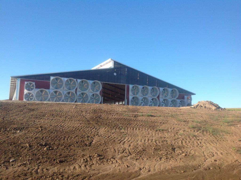 Tunnel ventilation on a dairy farm with exhaust fans (distance shot).