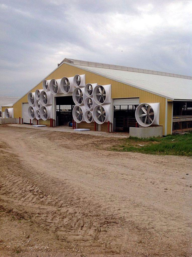 Tunnel ventilation on a dairy farm.