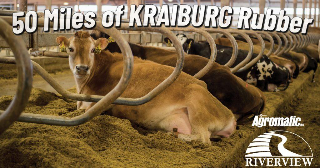 50 Miles of KRAIBURG Rubber at Riverview LLP dairy farm in Morris, Minnesota