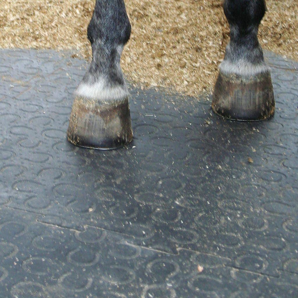 Horse standing on BELMONDO Trend rubber mat