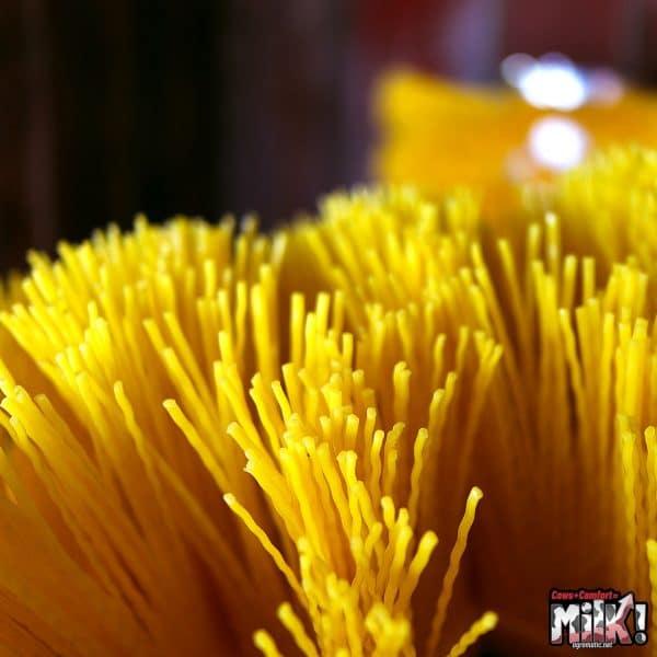 EasySwing Large Brush Close Up of Bristles